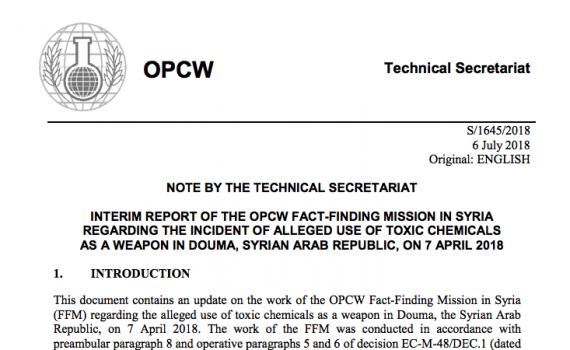 OPCW Zwischenbericht Douma